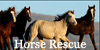 :iconhorse-rescue: