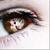 :iconhot-tamali: