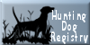 :iconhunting-dog-registry: