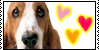 :iconhush-puppies: