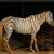 :iconi-love-horses-132: