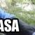 :iconiesiacasa4plz: