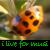 :iconilivef0rmusic: