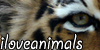 :iconiloveanimals: