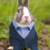 :iconiloverabbits21: