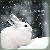 :iconinnerpledge: