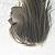 :iconinprint:
