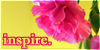 :iconinspirathon:
