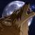 :iconinvictus-koyote: