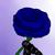 :iconirina1492: