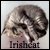:iconirishcat: