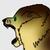 :iconjaderavenwolf: