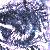 :iconjagger-moon: