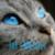 :iconjayswhisper: