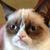 :iconjewel-kits: