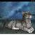 :iconJupitermoonwolf: