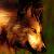 :iconk9wolfdog: