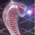 :iconkakashisdolphin: