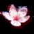 :iconkatsuu-san: