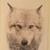 :iconkeatonwolfe: