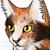 :iconkiwi-kitten423: