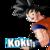 :iconkoku78: