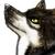:iconkotomiwolf: