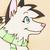 :iconkyotawolf: