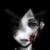 :iconl0v3-15-n3vr-wr0n9: