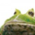 :iconl-oke: