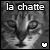 :iconla-chatte: