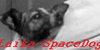 :iconlaika-spacedog: