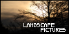 :iconlandscape-pictures: