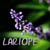 :iconlariope: