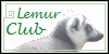 :iconlemurclub: