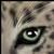 :iconleopard16: