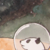 :iconlightcarrier: