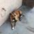 :iconlighter022:
