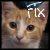 :iconlilfixit: