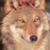 :iconliliththewolf13: