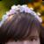 :iconlionpelt-66:
