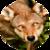 :iconlittle-moon-wolf: