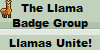 :iconllama-badge-group: