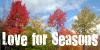 :iconlove-for-seasons: