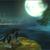 :iconlunar-wolf94: