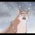 :iconlunatheninjawolf: