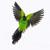 :iconlynjupiter: