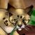 :iconlyraxcats: