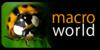 :iconmacroworld-club:
