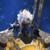 :iconmad-dragon249: